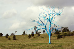 Blue tree. In forest landscape Stock Photo