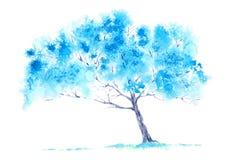 Blue tree. Royalty Free Stock Image