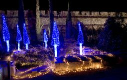 Blue trees. Archaeology garden during light festival in Jerusalem Stock Photography