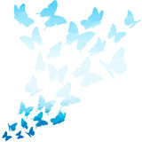 Blue triangle butterflies swirl. Flying butterfly pattern. butterfly  on white background. flying butterflies Royalty Free Stock Photos