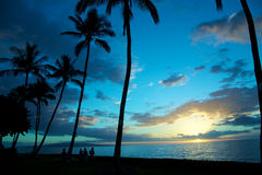 Blue tropical sunset Royalty Free Stock Photo