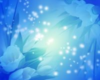 Blue tulips background Royalty Free Stock Photos