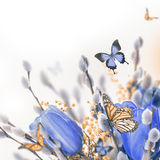 Blue tulips with mimosa and butterfly Stock Photography