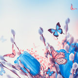 Blue tulips with mimosa and butterfly Royalty Free Stock Images