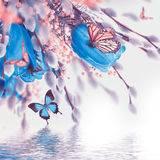 Blue tulips with mimosa and butterfly Royalty Free Stock Photo