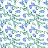 Blue tulips Royalty Free Stock Image