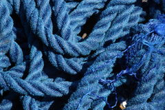 Blue twine Stock Photography