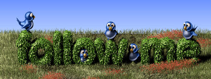 Blue twittering bird standing on a follow me hedge. Social media background with a blue bird Stock Photos