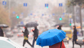 Blue umbrella Stock Photos
