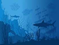 Blue underwater landscape Stock Photos