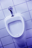 Blue urinal Stock Photo