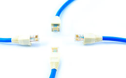 Blue utp cable Stock Photos