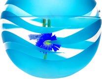 Blue vase Stock Image