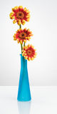 Blue Vase with Gerbera Flowers Royalty Free Stock Images