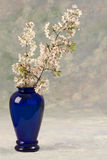 Blue Vase With Spring Flowers Royalty Free Stock Images