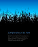Blue vector grass background Royalty Free Stock Image