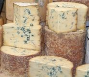 Blue Vein Cheese. Royalty Free Stock Photos