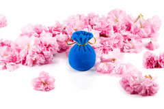 Blue velvet gift box for jewelry, surrounded by pink sakura flowers Royalty Free Stock Photography