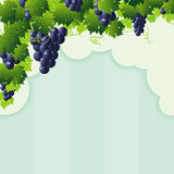 Blue vine grape cutout frame Royalty Free Stock Image