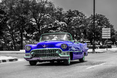 Blue vintage cabriolet car driver on the Malecon in Havana Cuba Stock Images