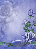 Blue vintage roses Royalty Free Stock Photography