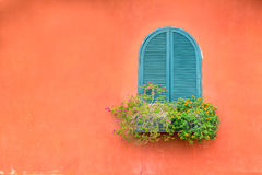 Blue vintage window with wooden flower box on orange wall. The blue vintage window with wooden flower box on orange wall Royalty Free Stock Photography