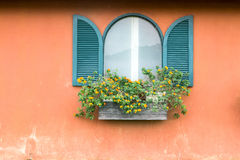 Blue vintage window with wooden flower box on orange wall Stock Image