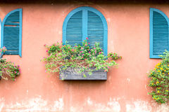 Blue vintage window with wooden flower box on orange wall Royalty Free Stock Images