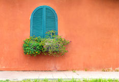 Blue vintage window with wooden flower box on orange wall Stock Photography