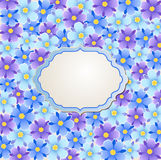 Blue and violet flowers Stock Photos
