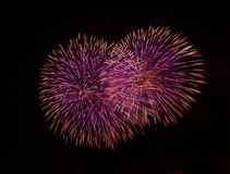 Blue, violet with red colorful fireworks in black background,artistic fireworks in Malta,Malta fireworks festival in dark sky back Royalty Free Stock Photos