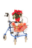 Blue walker with Christmas gifts and Poinsettia Royalty Free Stock Images