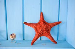 Blue wall decoration with red shellfish Stock Photos
