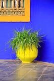 Blue wall yellow pot stock image