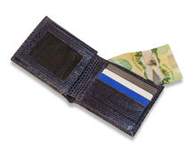 Blue Wallet. An open snakeskin wallet showing credit cards and a canadian $20 bill Stock Image