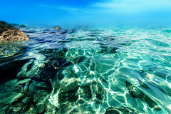 Blue Water Background with  low angle view / Turquoise sea / Sun Royalty Free Stock Images