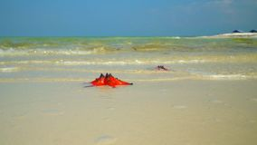 Blue water on the beach of the island. Beautiful sunny day. Blue waves on a background. The camera slowly removes waves. On this video you can uvdet as red stock footage