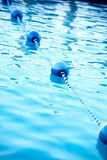 Blue water bouys in pool Royalty Free Stock Photos