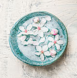 Blue water bowl with lovely spring blossom on light shabby chic background, top view. Spa and wellness. Concept Stock Image
