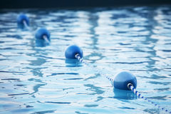 Blue water buoys in pool Stock Image