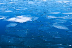 Blue water covered with ice Royalty Free Stock Images