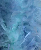 Blue water and feather blur background Royalty Free Stock Image