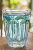 Blue water in glass Royalty Free Stock Image