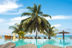 Blue Water In The Swimming Pool And Fluffy Palm Trees. Luxury Resort On Tropical Iseland. Royalty Free Stock Photo