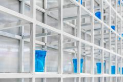 Blue water inside clear plastic cup on white metal shelf structu. Re for decoration. Installation art concept Stock Photos