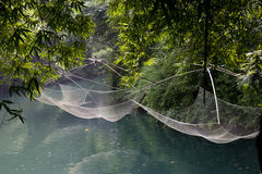 Blue water lake in bamboo forest. Blue water pond in bamboo forest,deep and clean,with some old net hanged up for catching fish Stock Images