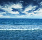 Blue water landscape Stock Photography
