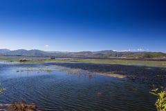 Blue water. Lashihai lake, Yunnan Province, China Royalty Free Stock Photo