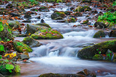 Blue water of mountain stream in autumn time Stock Photography