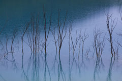 Blue water reflection Royalty Free Stock Images